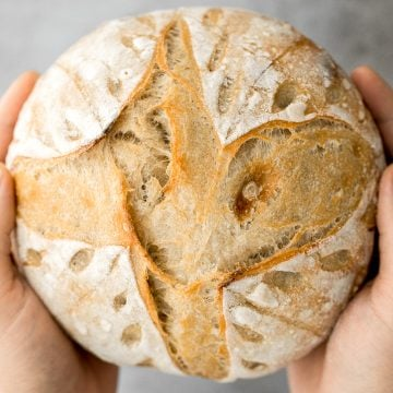 Small batch sourdough bread is airy and chewy with a crisp crust and a mild flavour. It takes less than 15 minutes of actual prep and requires no kneading. | aheadofthyme.com