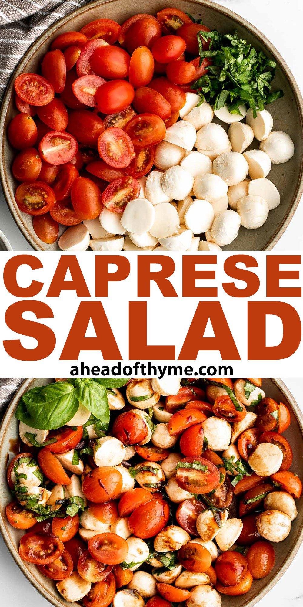 Tomato and Mozzarella Caprese Salad