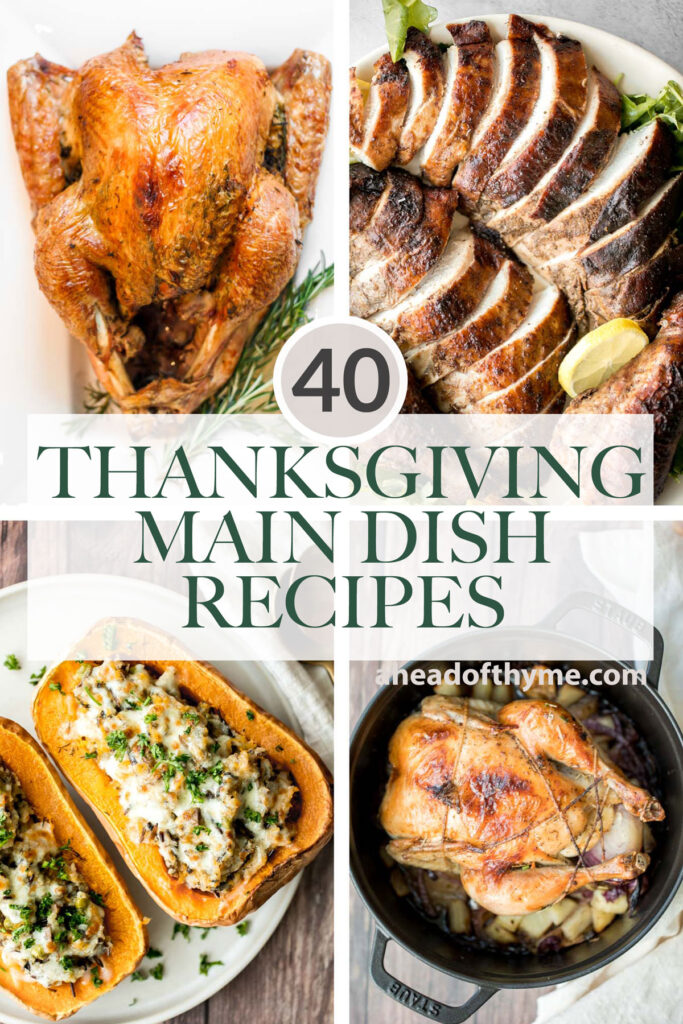 Over 40 most popular best Thanksgiving main dishes from turkey, chicken, vegetarian mains, and everything else that is not turkey (beef, lamb, or pork).   aheadofthyme.com